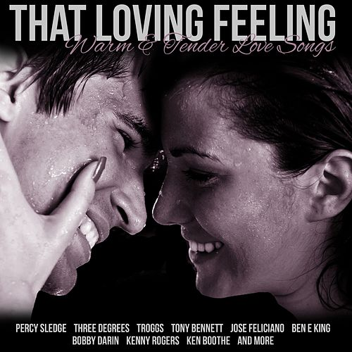 That Loving Feeling Warm and Tender Love Songs fra Various Artists