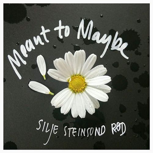 Meant to Maybe by Silje Steinsund Rød