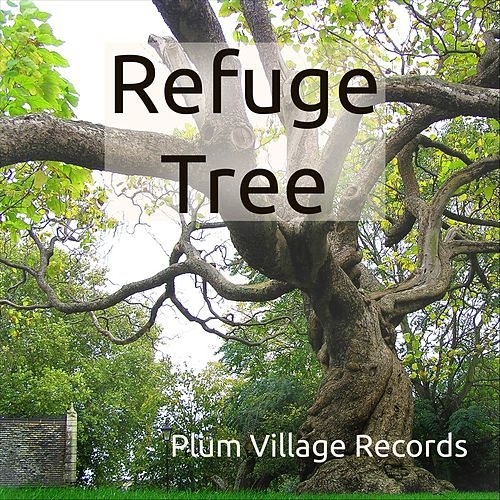 Refuge Tree by Various Artists