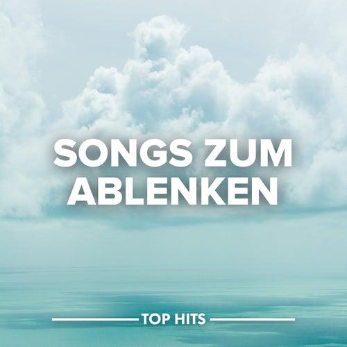 Songs zum Ablenken von Various Artists