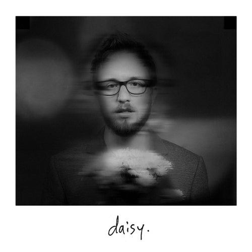 Daisy by Matt Van