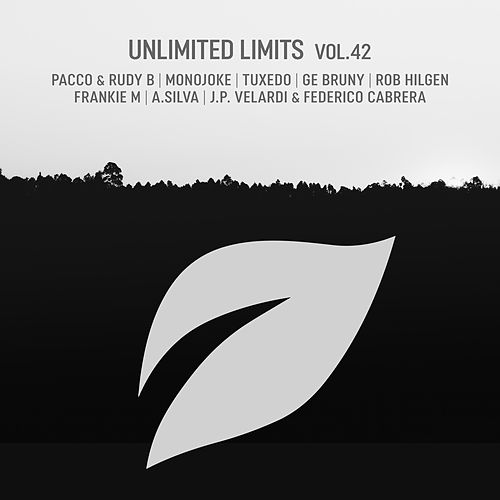 Unlimited Limits, Vol.42 by Various Artists
