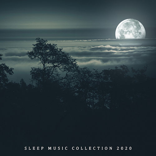 Sleep Music Collection 2020 - Relaxing Zen Music, Relaxation for Deep Sleep by Trouble Sleeping Music Universe