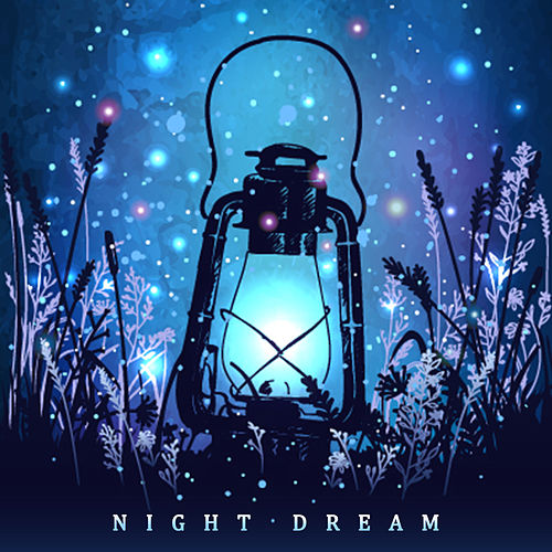 Night Dream di Various Artists