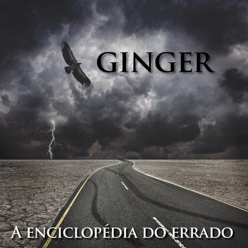 A Enciclopédia do Errado by Ginger