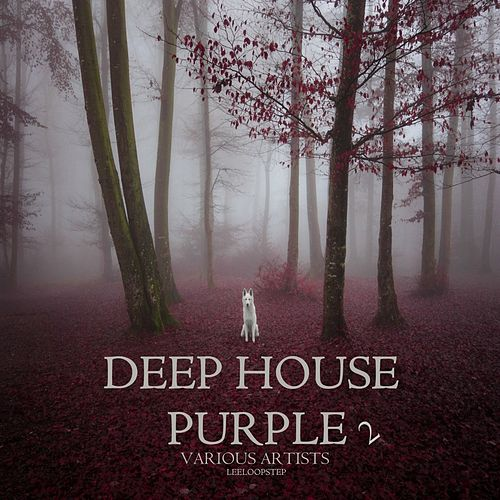 Deep House Purple 2 von Various Artists
