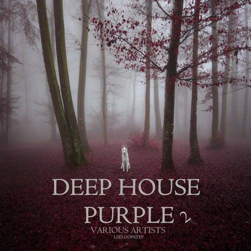 Deep House Purple 2 von Various Artists