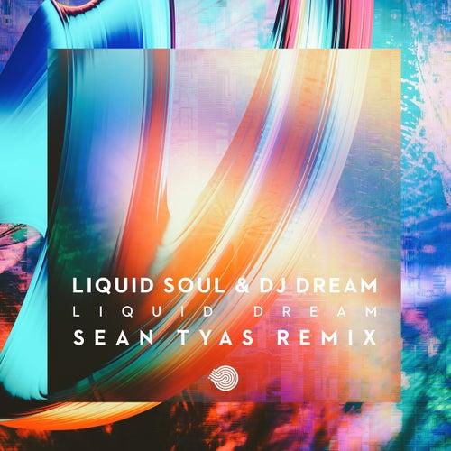 Liquid Dream (Sean Tyas Remix) van Liquid Soul