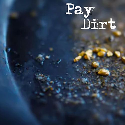 Pay Dirt by Alison Hogan