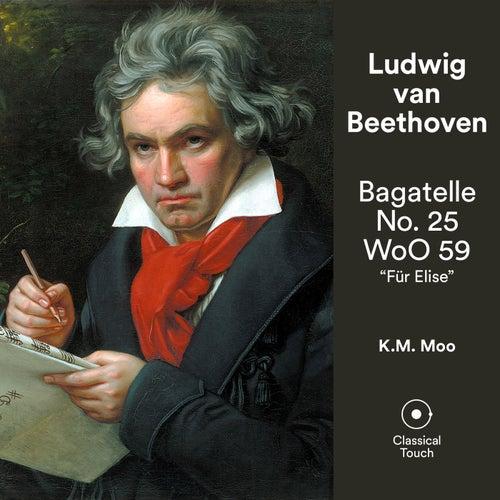 Bagatelle No. 25 'Für Elise' de Ludwig van Beethoven