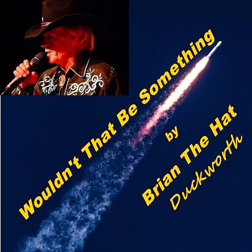 Wouldn't That Be Something by Brian the Hat Duckworth