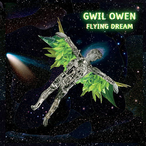 Flying Dream de Gwil Owen