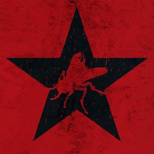 Somos Revolución de Alademoska