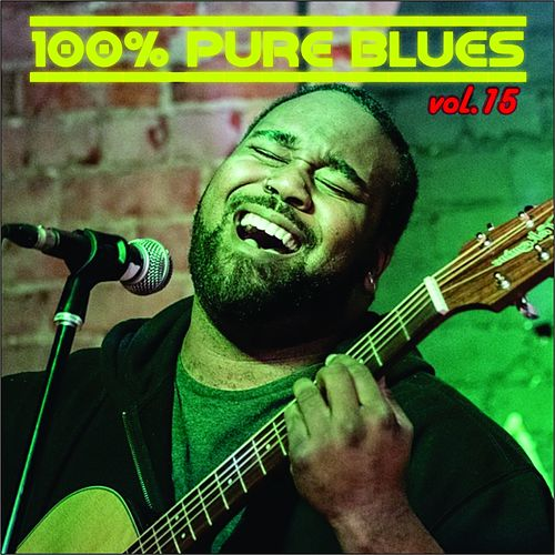 100% Pure Blues, Vol. 15 de Paul Butterfield Blues Band, Charlie Musselwhite, T Bone Walker, Big Joe Turner, Jimmy McGriff, Eric Von Schmidt, Jim Kweskin, Luther Johnson, Lightnin' Hopkins, Otis Smothers