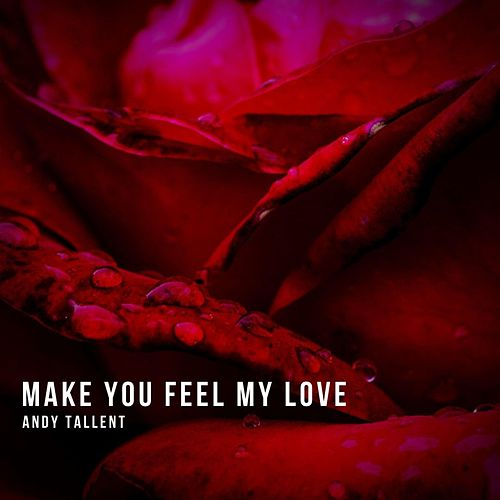 Make You Feel My Love by Andy Tallent