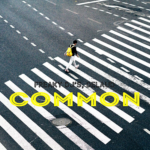 Common by Freaky DJ's