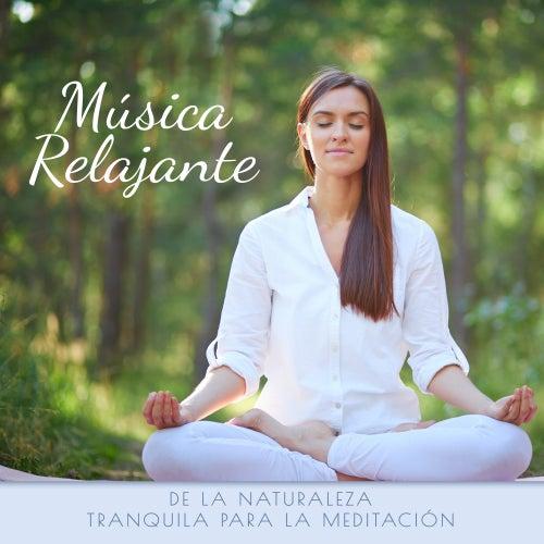 Música Relajante de la Naturaleza Tranquila para la Meditación de Relajación Meditar Academie
