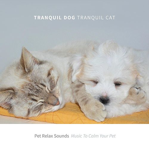 Pet Relax Sounds: Music to Calm Your Pet by Tranquil Dog Tranquil Cat