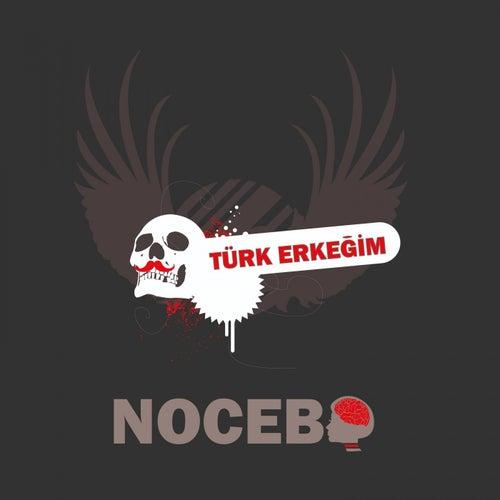 Türk Erkegim (House Mix) von Nocebo