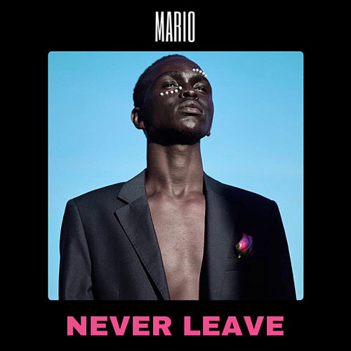 Never Leave by Mario