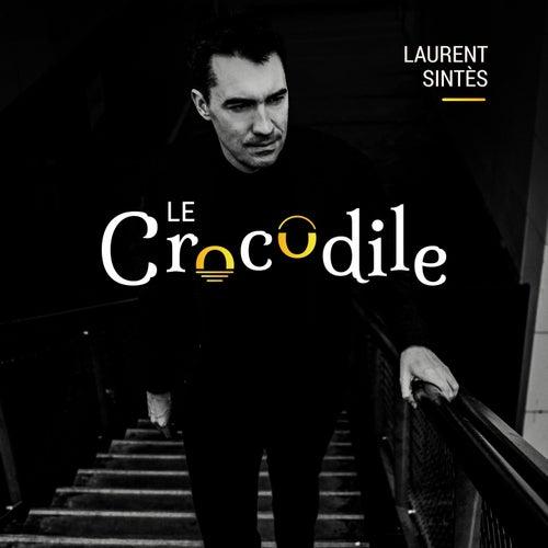 Le crocodile by Laurent Sintès