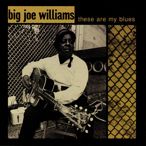 These Are My Blues (Live) de Big Joe Williams