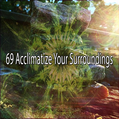 69 Acclimatize Your Surroundings de Zen Meditate