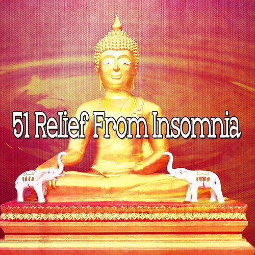 51 Relief from Insomnia de Yoga Workout Music (1)