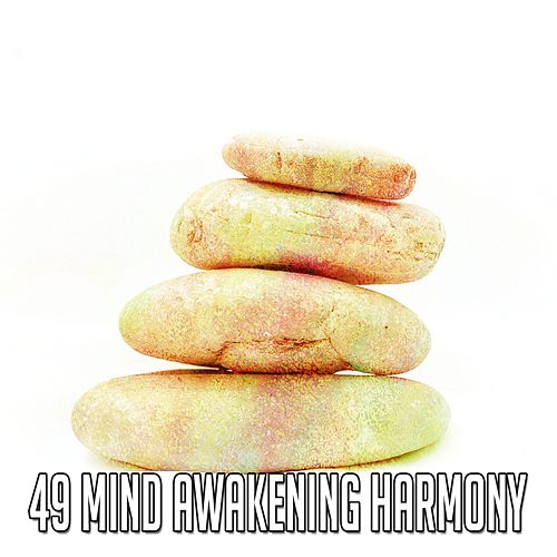 49 Mind Awakening Harmony by Classical Study Music (1)