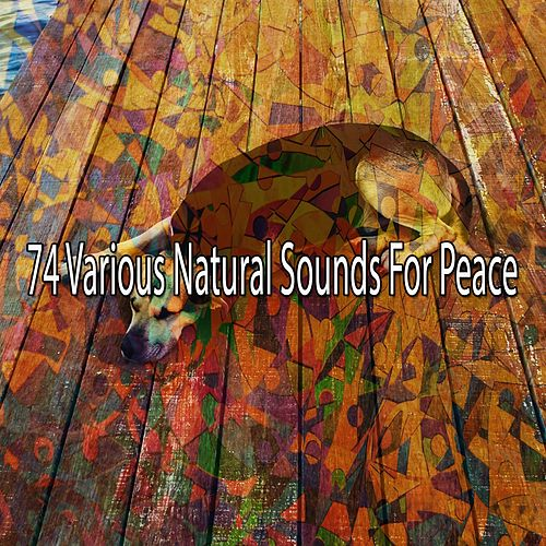 74 Various Natural Sounds for Peace von Relajacion Del Mar