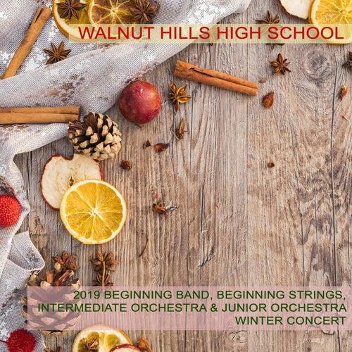 Walnut Hills High School 2019 Beginning Band, Beginning Strings, Intermediate Orchestra & Junior Orchestra Winter Concert by Various Artists