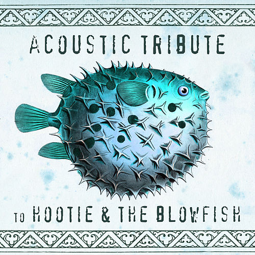 Acoustic Tribute to Hootie & The Blowfish (Instrumental) di Guitar Tribute Players