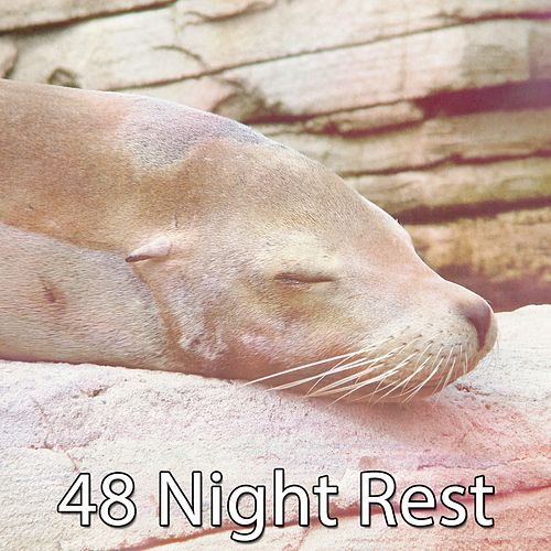 48 Night Rest de Best Relaxing SPA Music