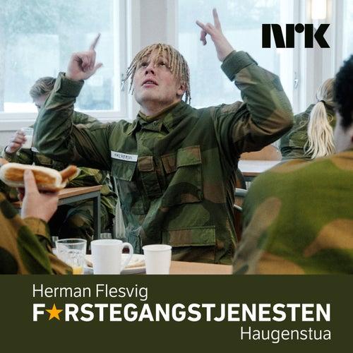 Haugenstua by Herman Flesvig