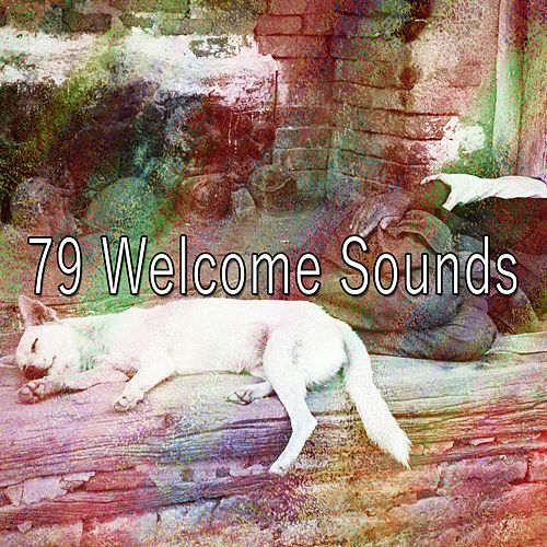 79 Welcome Sounds by Deep Sleep Music Academy