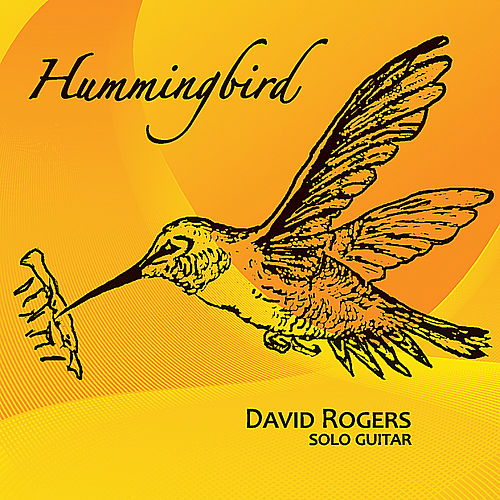 Hummingbird by David Rogers