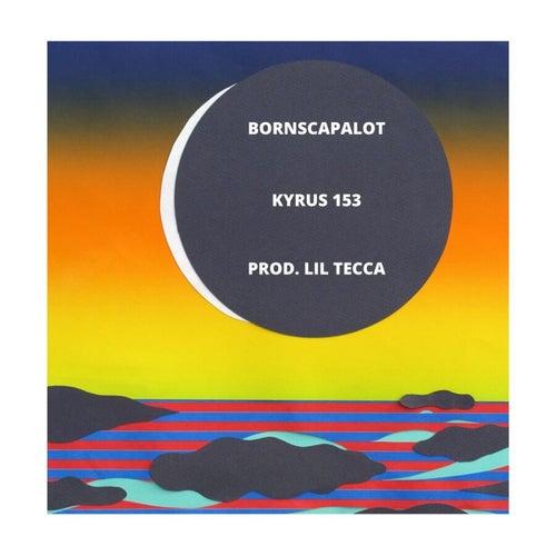 Kyrus 153 von BornsCapalot