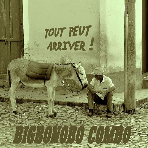 Tout Peut Arriver ! by Bigbonobo Combo