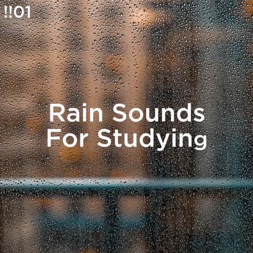 !!#01 Rain Sounds For Studying von Rain Sounds