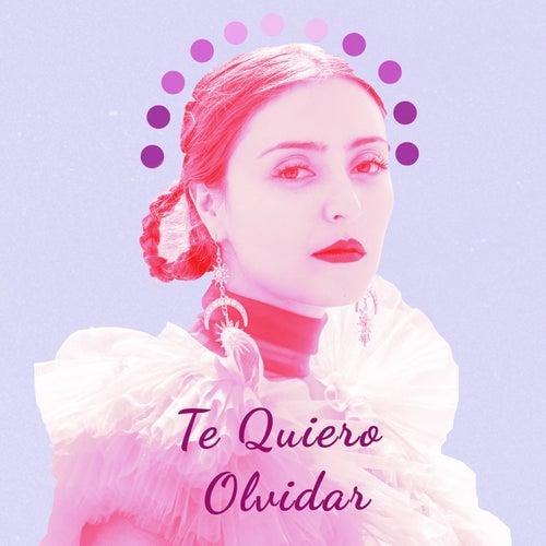 Te Quiero Olvidar by Salt Cathedral