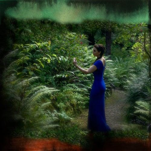 The Serpent Mound (Instrumental Remix) de Laura Sullivan