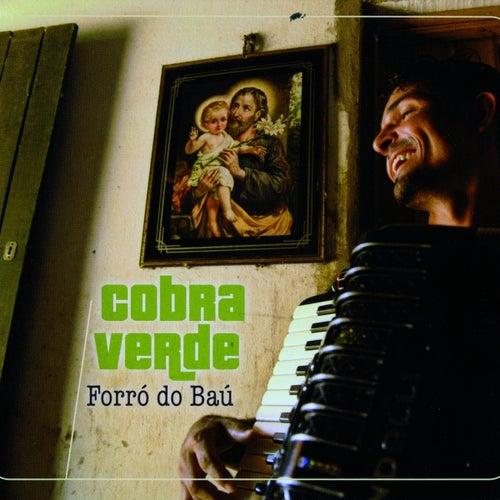 Forro do bau von Various Artists