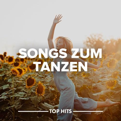 Songs zum Tanzen von Various Artists