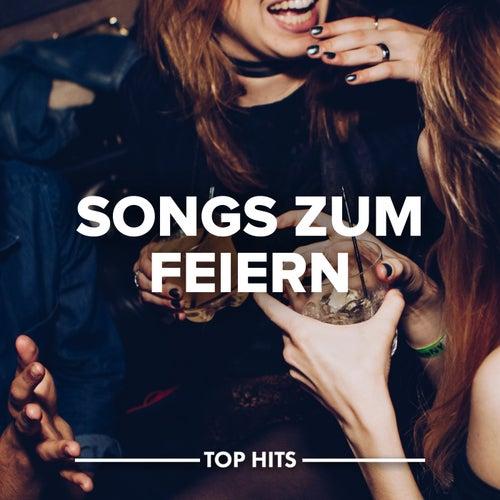 Songs zum Feiern von Various Artists