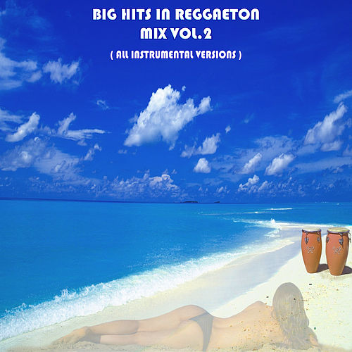 Big Hits in Reggaeton Mix Vol. 2 von Express Groove