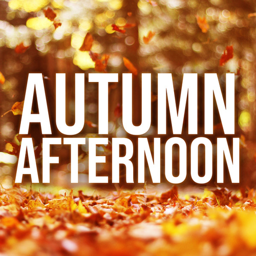 Autumn Afternoon van Various Artists