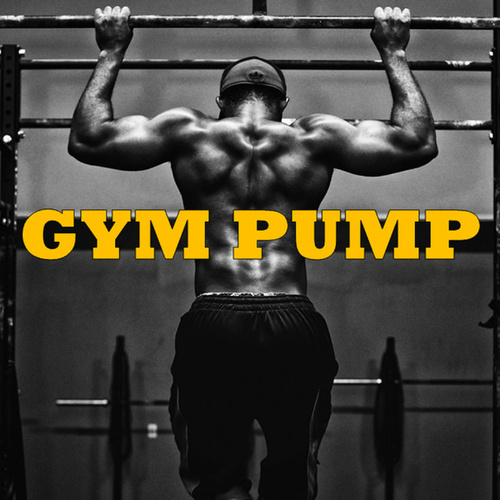 Gym Pump de Various Artists