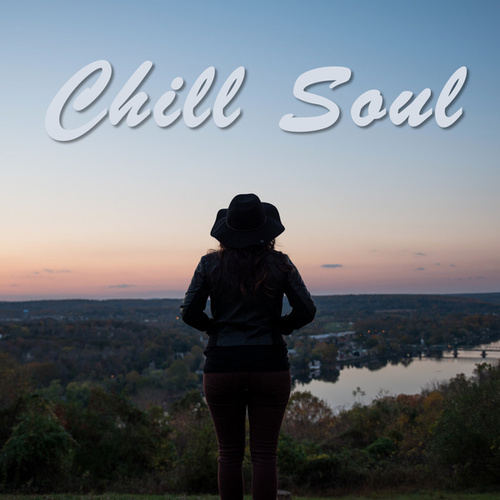 Chill Soul van Various Artists