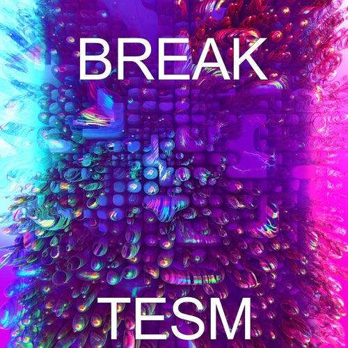 Break de Tesm
