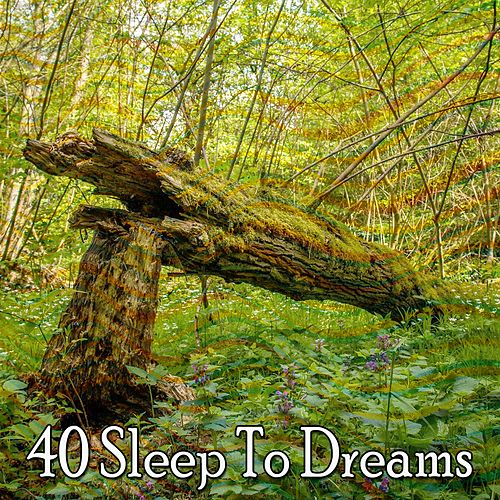 40 Sleep to Dreams by Trouble Sleeping Music Universe
